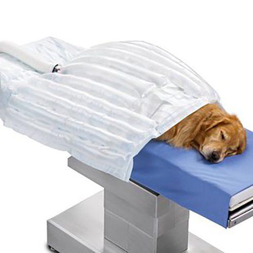 Patient Warming