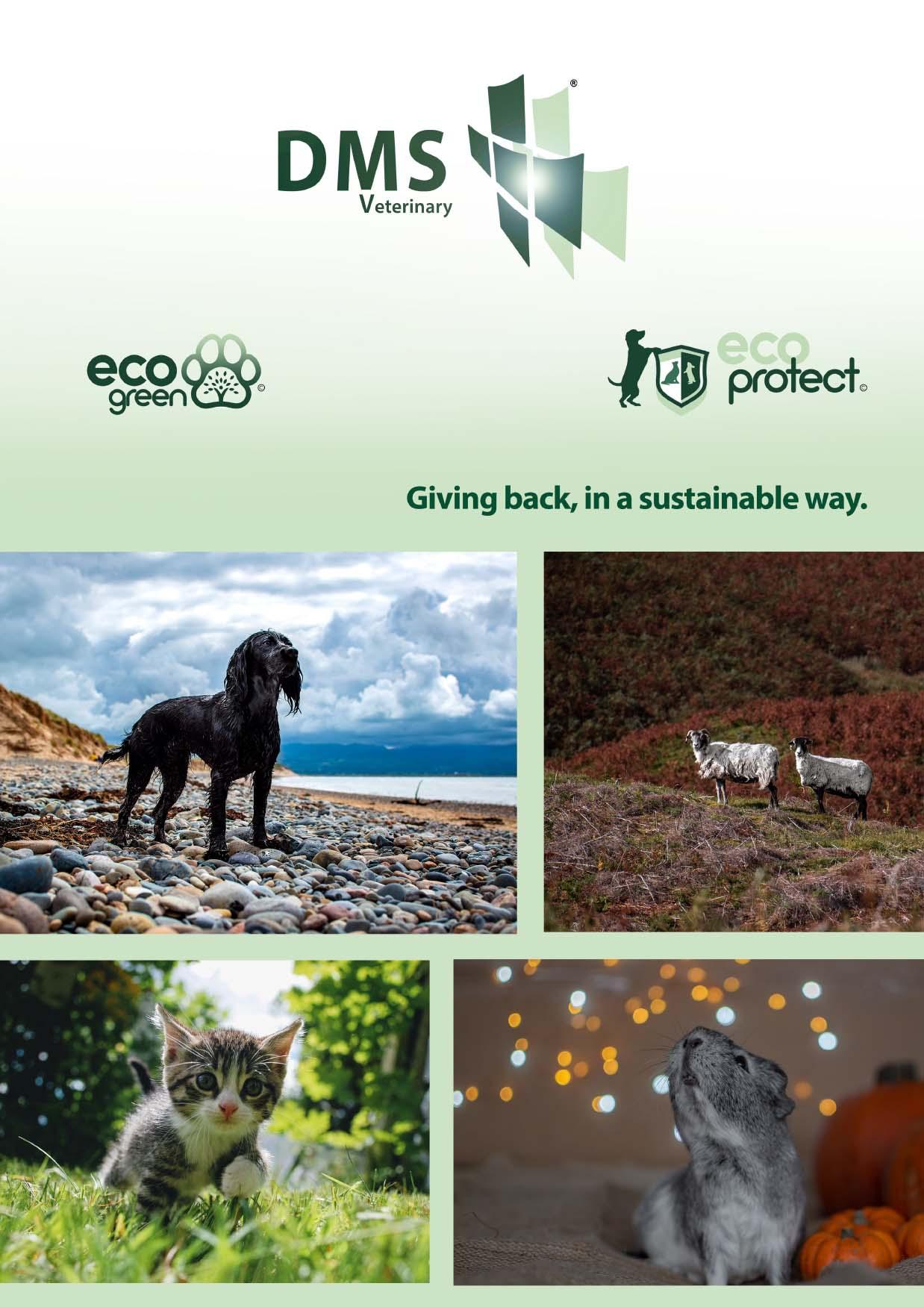 Eco green and Eco protect